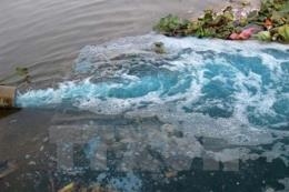 Truy tìm chủ xả trộm chất thải độc chảy đến đâu cá chết đến đó