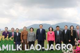 """Khởi công xây dựng tổ hợp """"Resort"""" bò sữa Organic quy mô 5.000ha tại Lào"""