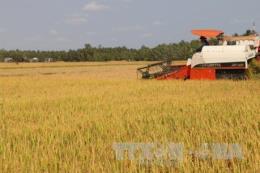 Phát triển nông nghiệp công nghệ cao - Bài 1: Khó vì đâu?