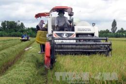 Chính phủ ra Nghị quyết thúc đẩy doanh nghiệp đầu tư vào nông nghiệp