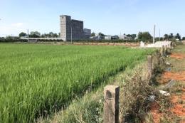 Chuyển mục đích sử dụng gần 33,5 ha đất tại Long An