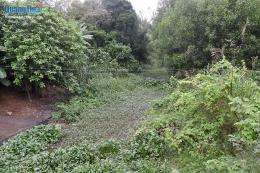 Dân đổ đất lấp kênh phản đối Khu công nghiệp xả thải gây ô nhiễm