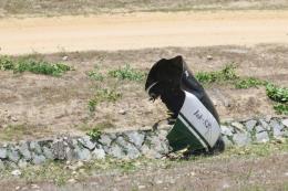 Tin thêm vụ máy bay quân sự rơi tại Khánh Hòa