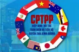 Thủ tướng chỉ định cơ quan đầu mối triển khai Hiệp định CPTPP