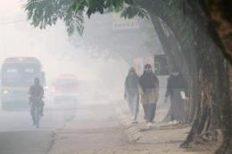 Indonesia với giải pháp chống ô nhiễm không khí