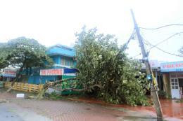 Điện lực miền Bắc khắc phục hậu quả cơn bão số 2