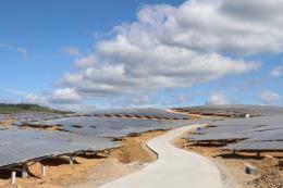 Thủ tướng yêu cầu kiểm tra phản ánh về phát triển điện mặt trời