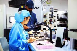 Singapore có nhu cầu cao về nhân tài IT và kỹ thuật số