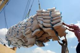 Giá trị xuất khẩu gạo giảm mạnh