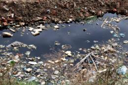Thanh Hóa: Xử lý rác thải vùng ven biển còn nhiều gian nan