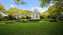 Thành lập ngân hàng hạt giống đầu tiên của Singapore