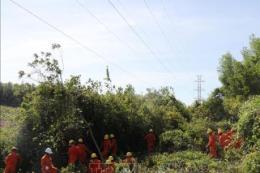 Quảng Trị thực hiện nhiều giải pháp đảm bảo an toàn hành lang lưới điện