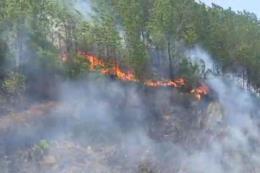 Khởi tố các đối tượng liên quan đến cháy rừng ở huyện Hương Sơn, Hà Tĩnh