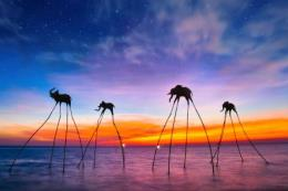 Điểm đến trong nước được lòng du khách Việt
