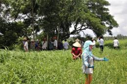 Bến Tre yêu cầu trang trại nuôi vịt khắc phục tình trạng gây ô nhiễm môi trường