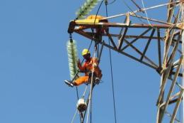 Tổng công ty Phát điện 1 đảm bảo cung ứng điện cuối năm