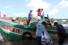 Tăng cạnh tranh cho thủy sản Việt Nam - Bài 1: Giải bài toán nguyên liệu