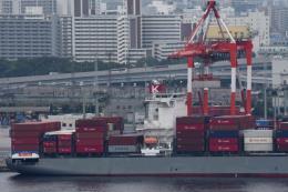 Các hạn chế xuất khẩu của Nhật Bản gây lo ngại về những tác động trên toàn cầu