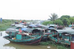 Hàng trăm tàu cá tại Phú Yên phải nằm bờ do vướng quy định