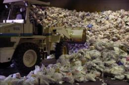 Hành động để chống rác thải nhựa -Bài 4: Bài học từ Nhật Bản