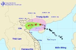 Bão số 3: Quảng Ninh và Hải Phòng đề phòng nước dâng kết hợp triều cường