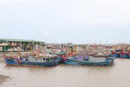 Hoạt động trên biển tại Hải Phòng dần trở lại bình thường sau cơn bão số 3