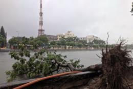 Hải Dương: Nhiều tuyến phố ngập sâu, cây đổ hàng loạt