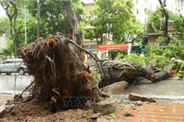 Hà Nội chủ động ứng phó về môi trường do ảnh hưởng bão số 3