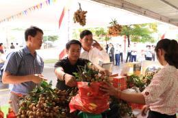 Lần thứ 3 tổ chức Tuần lễ nhãn lồng Hưng Yên tại Hà Nội