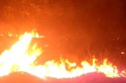 Cháy rừng ở đảo Elafonisos (Hy Lạp), một khách sạn phải sơ tán