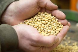 Tổng thống Mỹ đề nghị Nhật mua nông sản