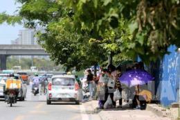 Dự báo thời tiết ngày 14/8: Bắc Bộ và Nam Trung Bộ có nắng nóng