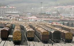 Nga có thể cấm xuất khẩu gỗ sang Trung Quốc