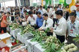 Khai mạc Tuần lễ quảng bá sản phẩm na Chi Lăng tại Hà Nội