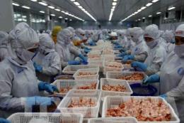 Động lực mới với các doanh nghiệp xuất khẩu tôm