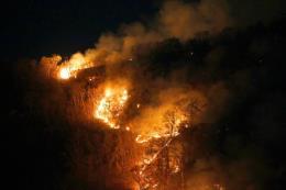 Brazil: Hơn 1.600 vụ cháy rừng mới xảy ra chỉ trong 2 ngày