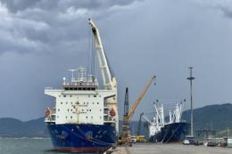 Hàng hải chuẩn hóa toàn bộ thủ tục hành chính lên mức độ 4