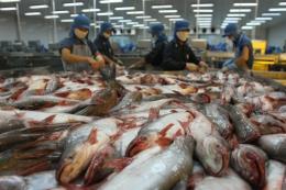 Những thách thức cho thủy sản Việt Nam những tháng cuối năm