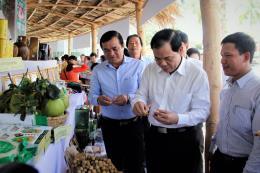 Gần 365.000 tỷ đồng xây dựng nông thôn mới tại vùng Duyên hải Nam Trung Bộ và Tây Nguyên