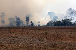 Ít nhất 2.510 điểm nóng cháy rừng đã được phát hiện tại Đông Nam Á