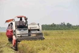 Ứng dụng công nghệ viễn thám cho bảo hiểm nông nghiệp
