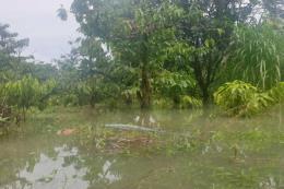 Xây dựng thủy điện Quảng Tín gây nên tình trạng ngập lụt
