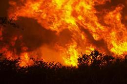 Indonesia: Cháy rừng dữ dội, hàng nghìn người dân cầu mưa