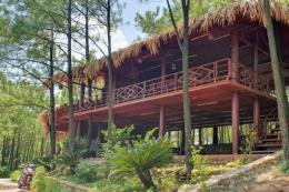 UBND tỉnh Quảng Ninh chỉ đạo thanh tra việc xâm lấn đất rừng làm du lịch ở Uông Bí