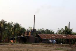 Hàng trăm lò than gây ô nhiễm môi trường nặng nề tại Bến Tre