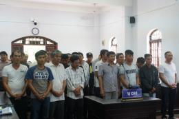 Tuyên án 25 bị cáo trong đường dây khai thác, vận chuyển gỗ lậu