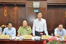Thuốc lá ngoại, đường cát nhập lậu trên địa bàn tỉnh Long An giảm mạnh