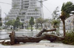 Bão Tapah gây mất điện trên diện rộng ở Nhật Bản