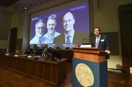 Giải Nobel Y học vinh danh nghiên cứu mở đường cho điều trị bệnh thiếu máu và ung thư