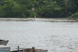 Điều tra nguyên nhân vụ chìm sà lan trên kênh Chợ Gạo